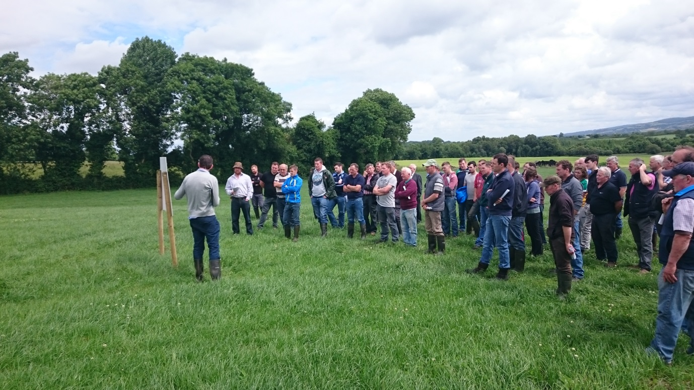 Grazing infrastructure workshop