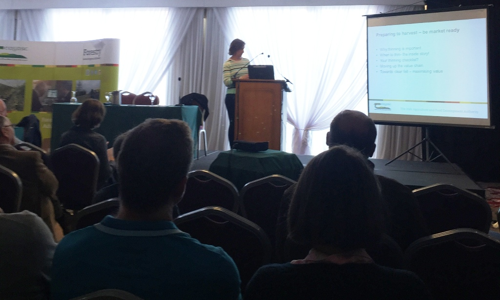 Frances McHugh presenting at Talking Timber 2018 in New Ross, Wexford