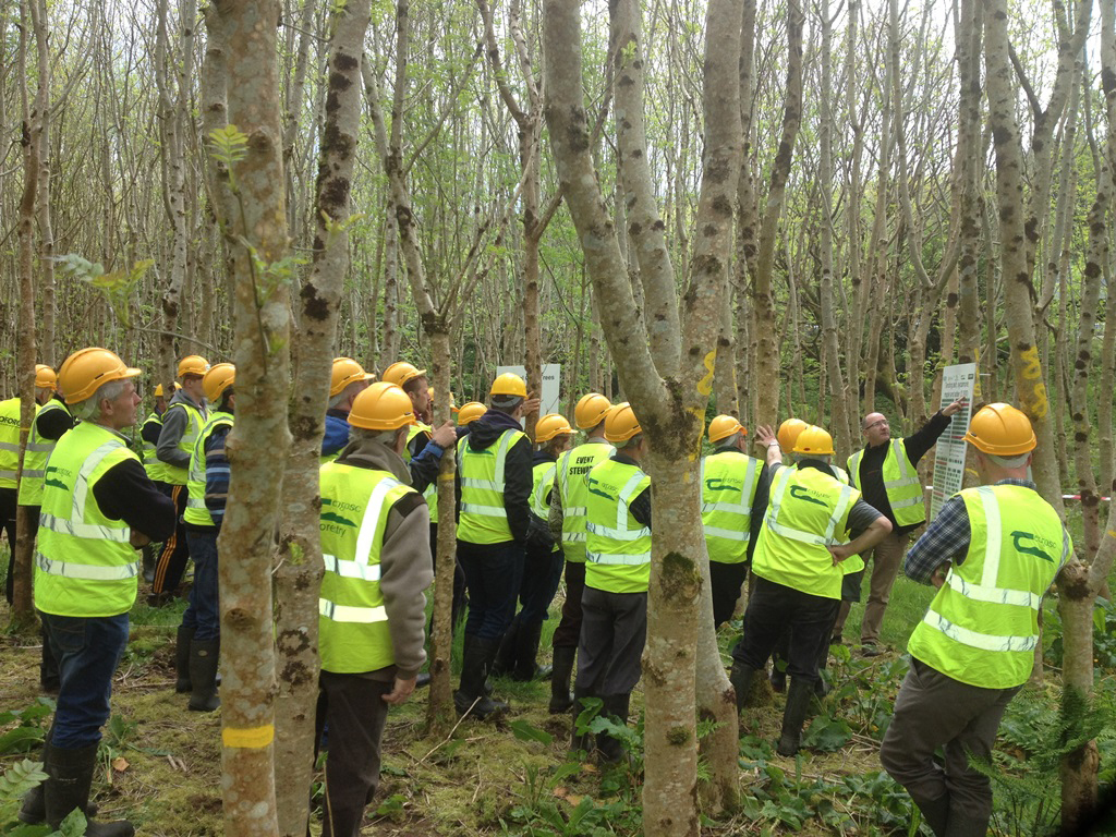 -	Tom Houlihan discussing the benefits of timely management at the ash thinning event, Dunmanway, Co Cork