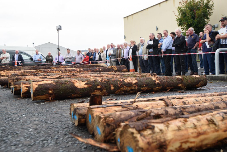 Clive Stoddart, Supply Manager with Balcas explains to participants the different timber assortments and quality required by Irish sawmills. This outdoor demonstration was organised by the Irish Forestry and Forest Products Association.