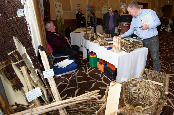 Talking Timber Letterkenny 2016 5