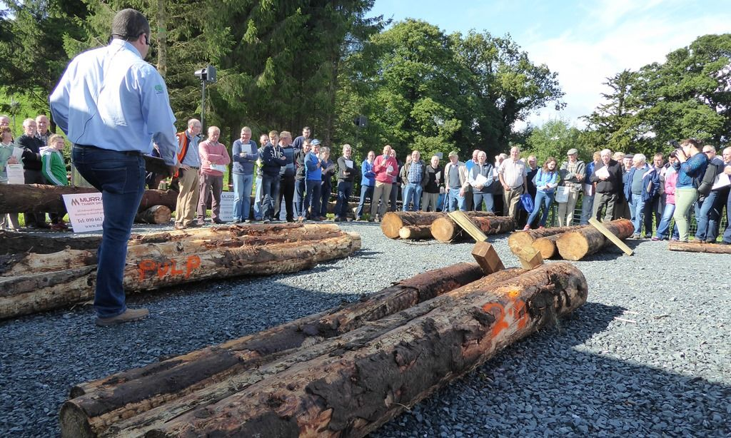 John Ryan, Murray Timber Group explains the various timber assortments and qualities required by Irish sawmills at Talking Timber 2017, Teagasc Ballyhaise College, Cavan