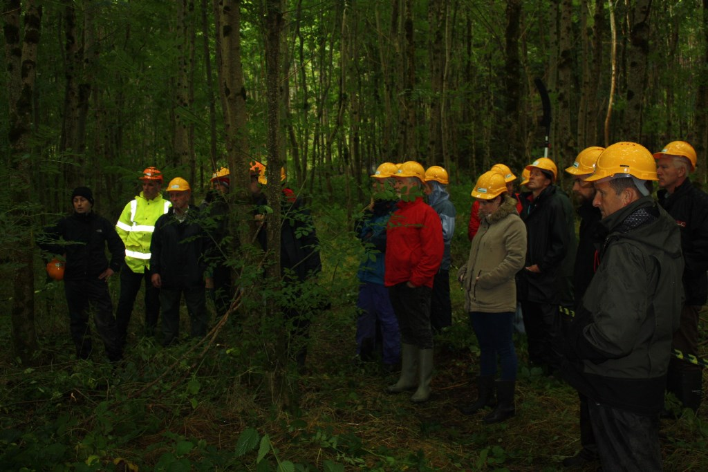 Field day on broadleaf management and thinning. The event was held in Bill Connell's forest, Co Westmeath and organised by Liam Kelly of Teagasc and the Westmeath Farm Forestry Group.