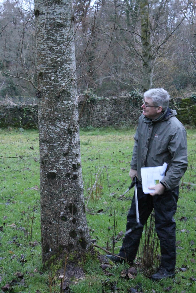 shortfor Tom Kent WIT inspecting tree growth