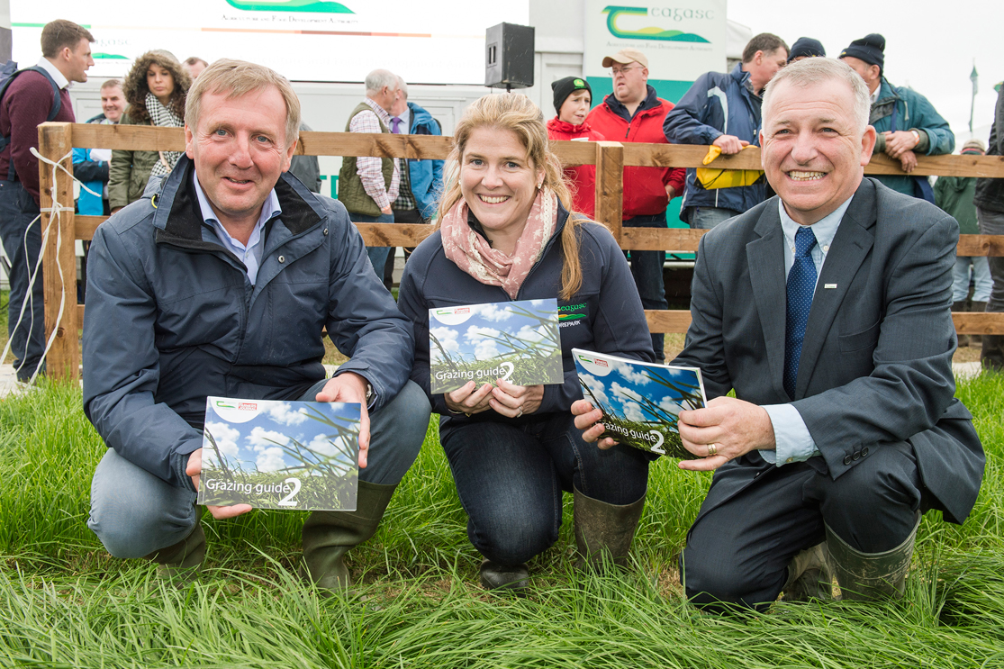 Grazing Guide for Dairy, Beef and Sheep Published