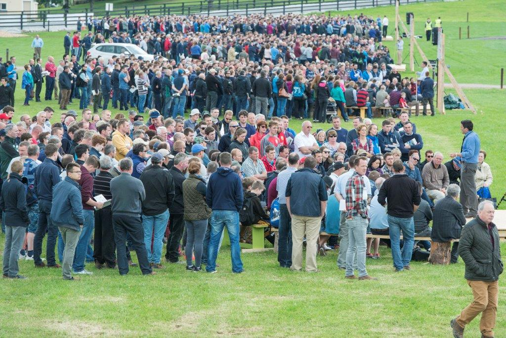 Dairy Farmers Flow to Teagasc Moorepark Dairy Open Day