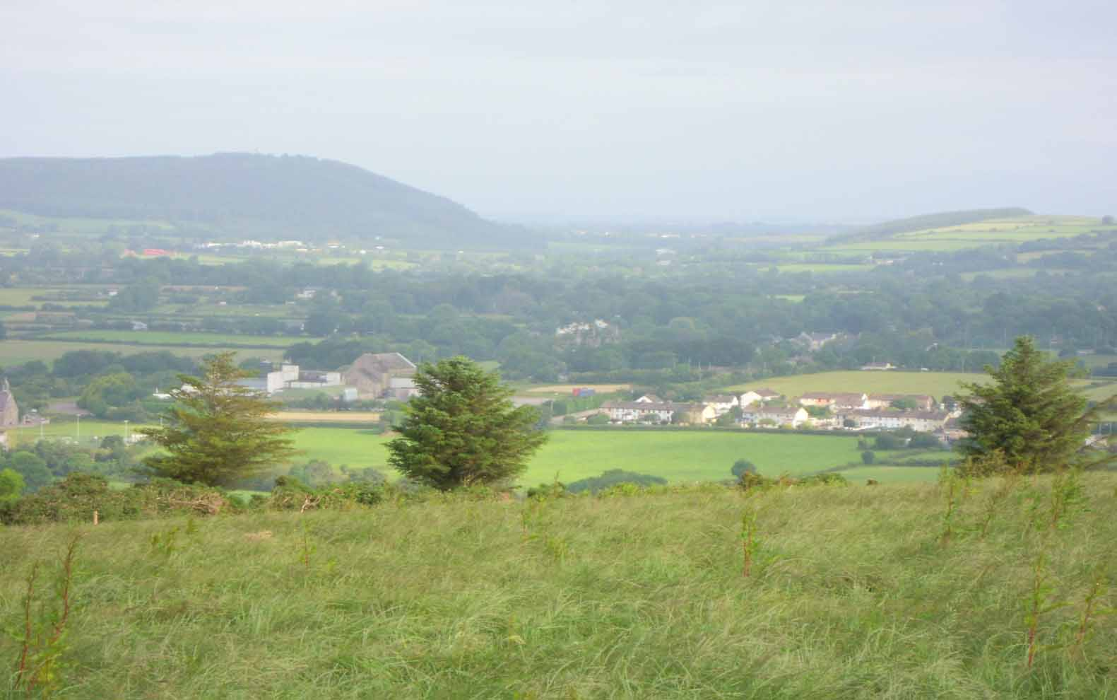 New project rewards farming with nature in east Cork