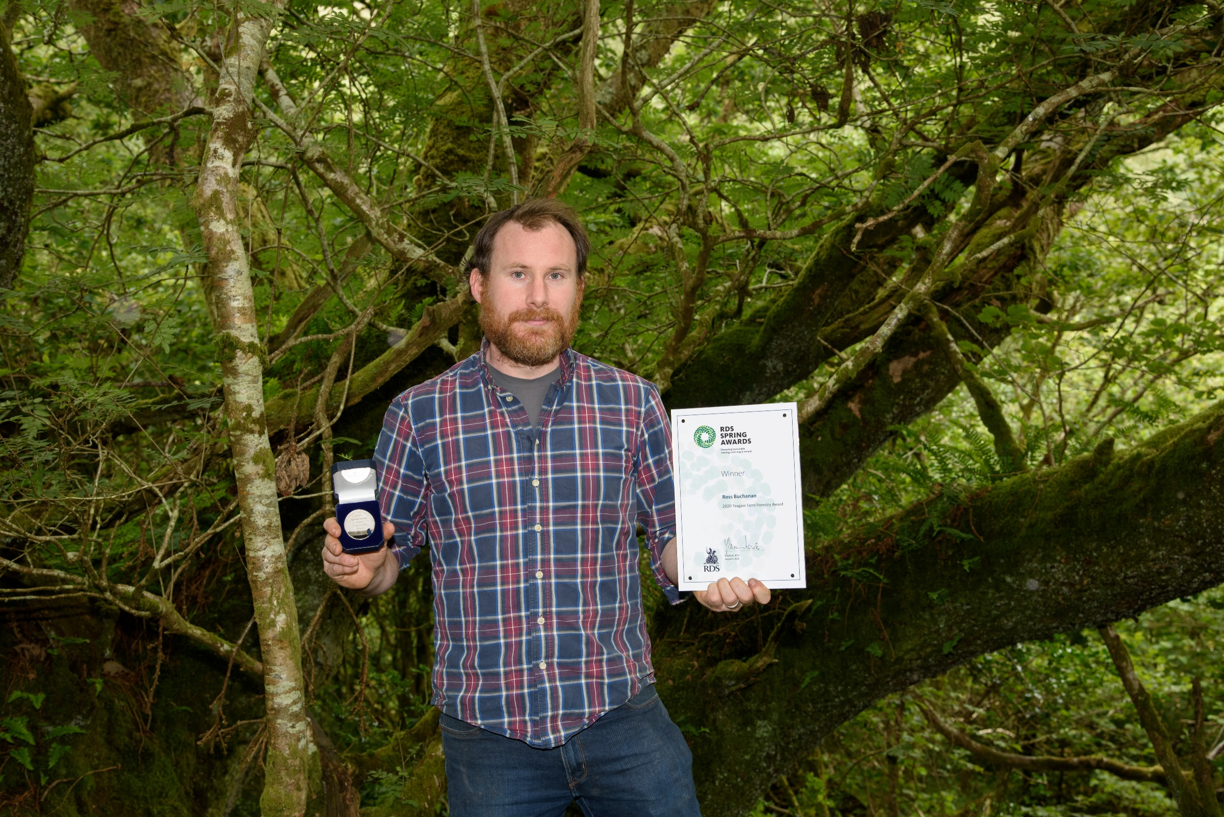 Winner of 2020 RDS Teagasc Farm Forestry Award announced