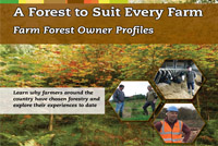 Teagasc launches - 'A Forest to Suit Every Farm' booklet