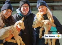 Sheep Production - Farm Walk and Talk with AgriAware