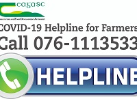 Teagasc re-introduce COVID-19 telephone helpline for farmers