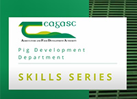 Teagasc Pig Development Department Skills Series - Artificial Insemination