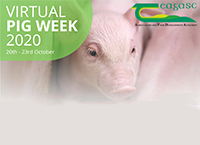 The Role of Feed Ingredients in Disease Transmission - Virtual Pig Week