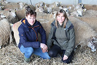 Questions and Answers with Organic Farmers Ross and Amy Jackson
