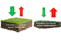Enhancing soil carbon sequestration to contribute to carbon neutrality on Irish farms