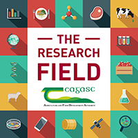 The Research Field