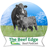 The Beef Edge Podcast